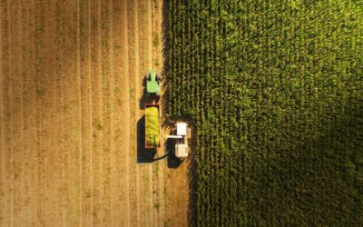 Agricultural Land Regulation Opens New Possibilities for the Energy Sector